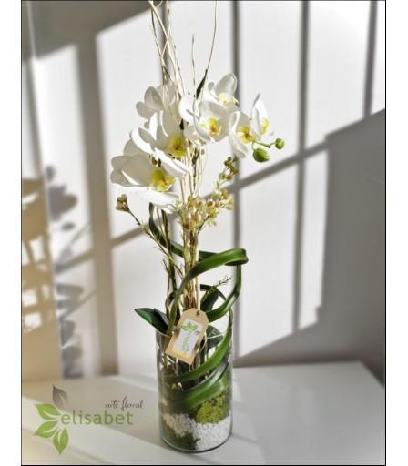 Centro de orquídea en cristal
