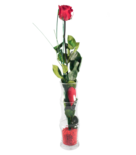 Rosa Eterna San Valentin