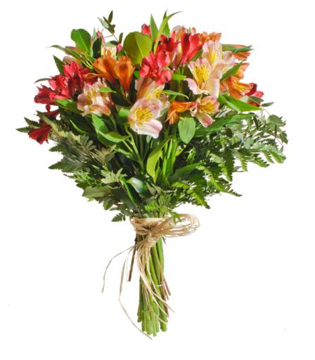 Ramo de flores Alstroemeria