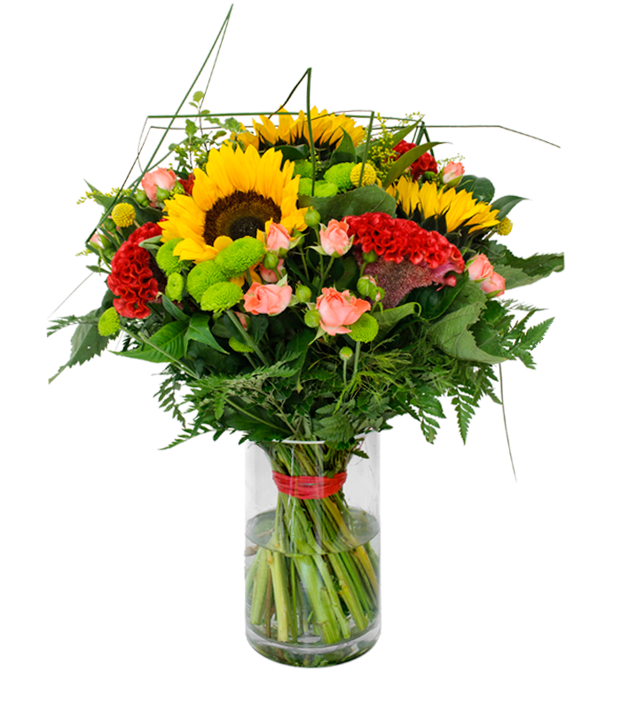 envo de ramo de flores a domicilio girasoles - Imagenes De Ramos De Flores