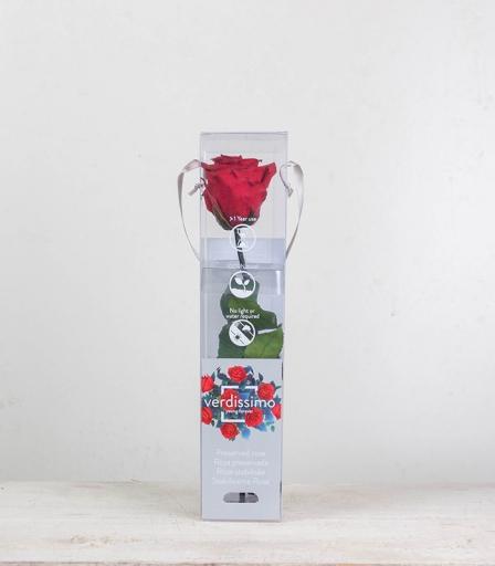Rosa Eterna Mini
